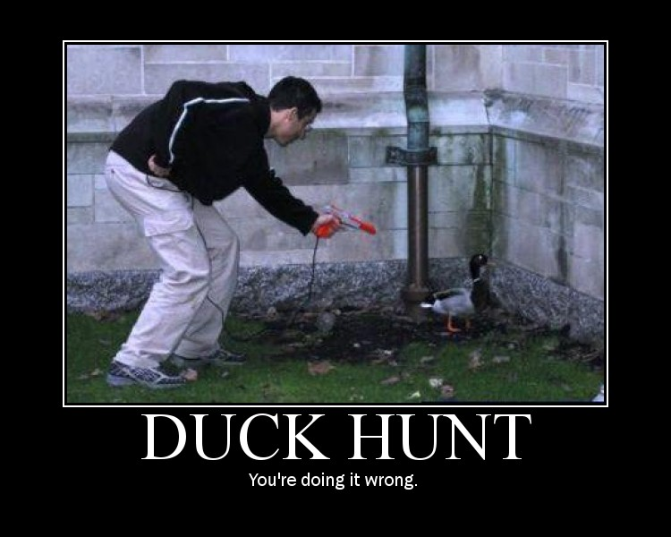 duck hunt nintento fail load the game